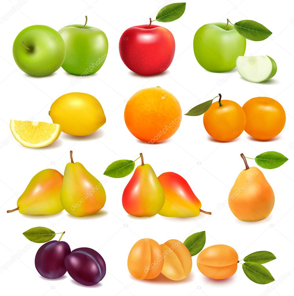 Big group of different fresh fruit. Vector.