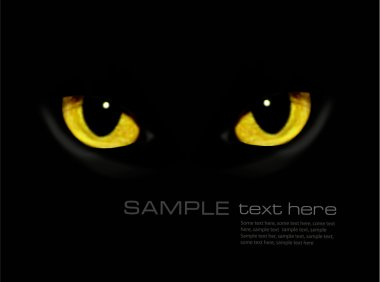 Cat eyes in dark night Vector background