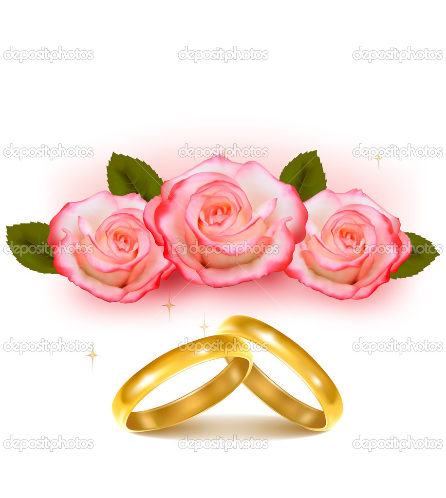 Gold wedding rings in front of three pink roses Vector — Stock ...