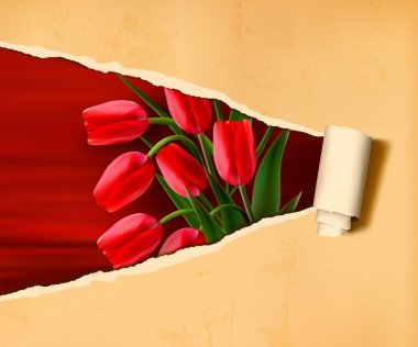 Flower background with old ripped paper. Vector illustration.