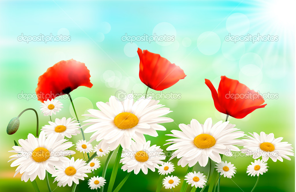 Nature background with summer flowers and open zipper Vector illustration