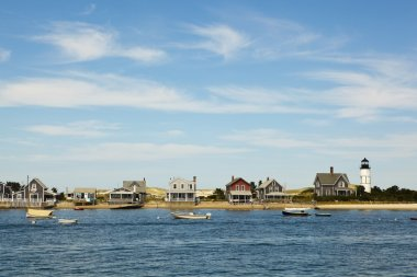 Cape cod: houses by the sea