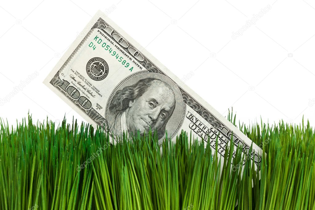 Dollar and Green Grass