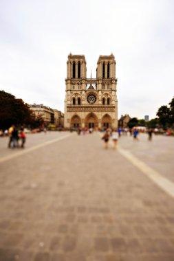 View of Notre Dame de Paris, France
