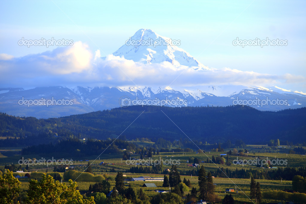 Mt. Hood and Hood River valley, Oregon.