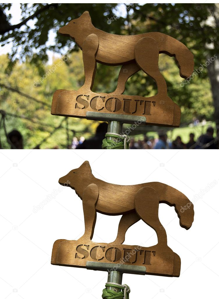 Scout totem