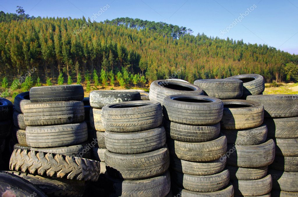 Old Tires near trees