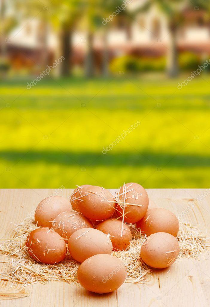 Village eggs.jpg