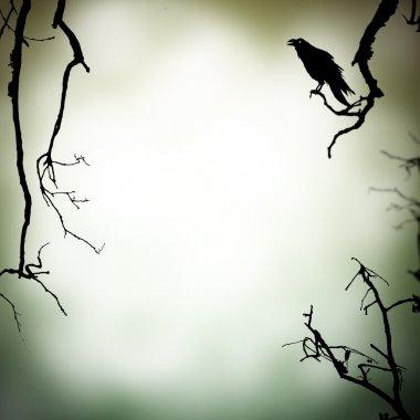 Horror background
