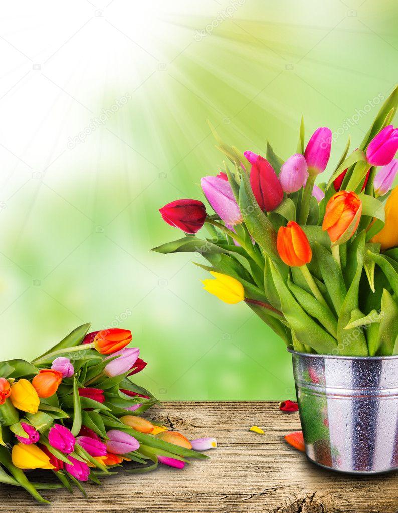 Spring still life