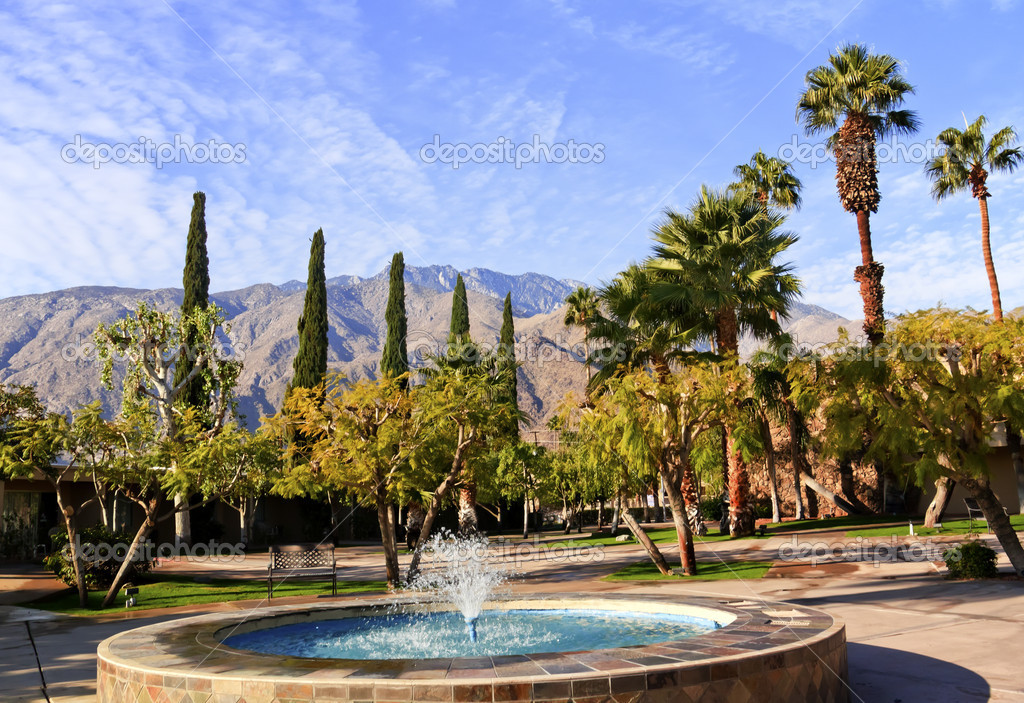 Fan Palms Trees Blue Fountain Palm Springs California