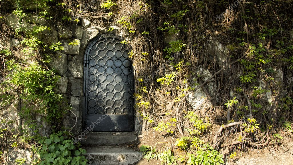 Mysteru door in the forest