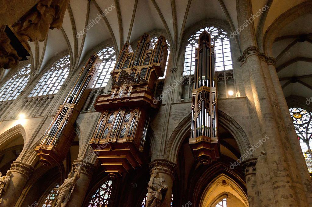 organo interno di san michele e la cattedrale di santa