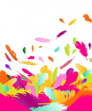 Exotic feather vector background
