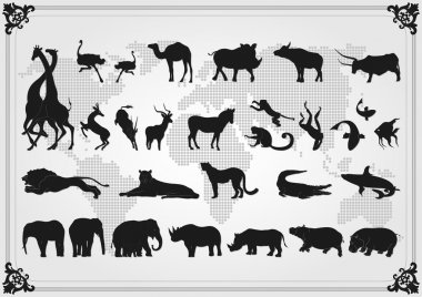 Africa animals illustration collection background