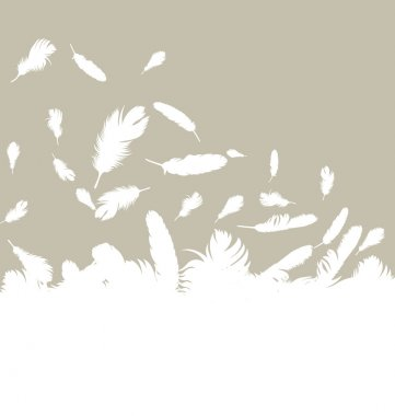 Bird feathers background illustration vector