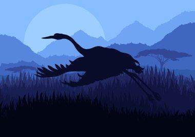 Stork bird wild nature landscape illustration
