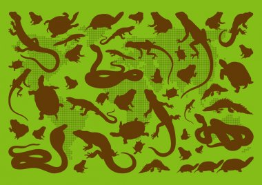 Amphibian reptile environmental illustration collection background vector stock vector