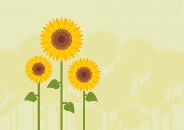 Yellow sunflowers landscape background illustration