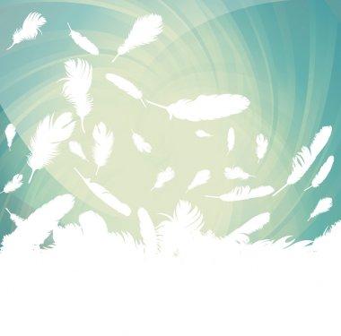 Bird feathers background illustration vector