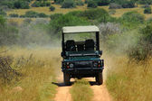 Na safari v Africe