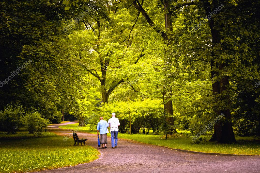 Elderly couple walking in the spring park