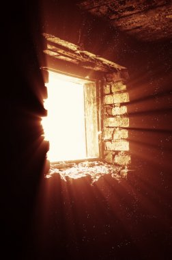 Rays of light from a window