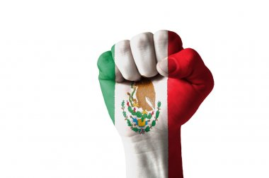 Fist painted in colors of mexico flag