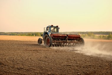 Plowing the land. Agricultural work.