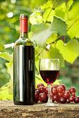 bottiglia di vino rosso, vetro e grappolo duva