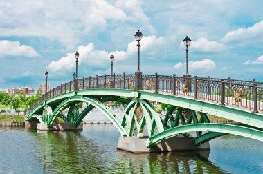Bridge and river in Tsaritsino Park, Moscow