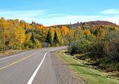 strada attraverso autunno