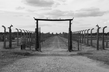 Picture from Auschwitz Birkenau