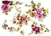 Fényképek virágok