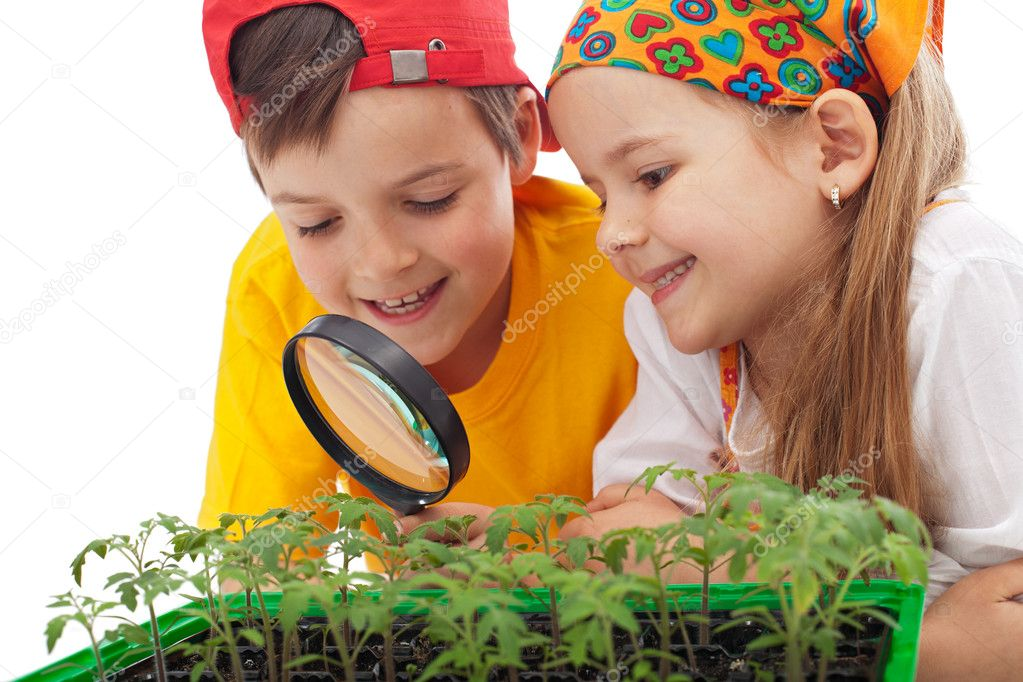 Kids learning to grow food