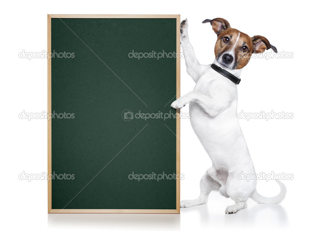 Dog with blackboard