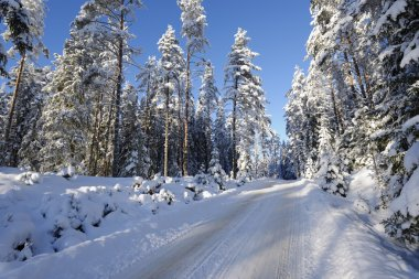 Small snowy road, winter landscape in sweden stock vector