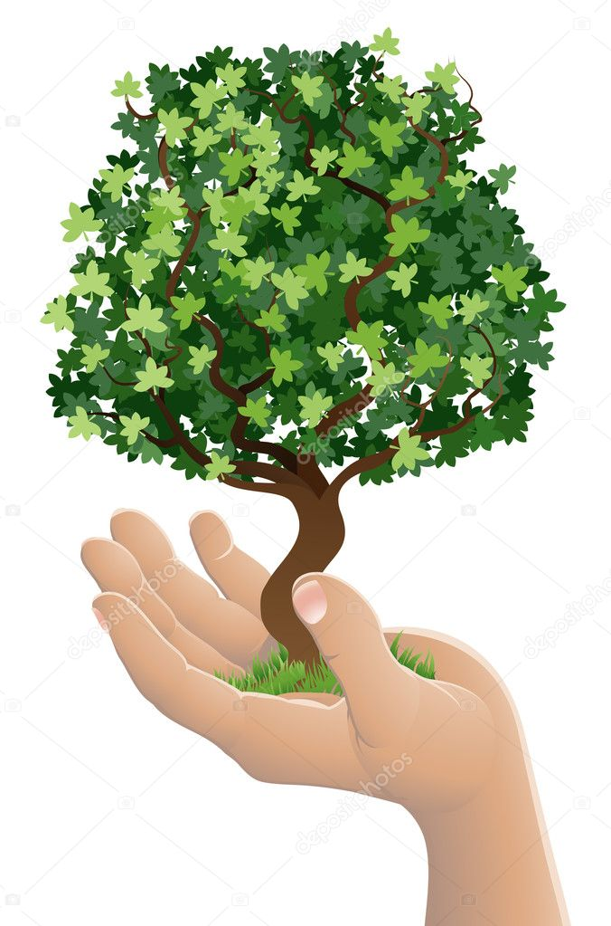 Hand holding a growing tree