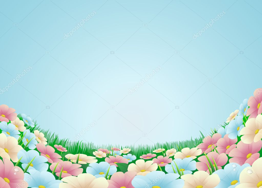 Flower meadow illustration