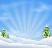Fotografie vánoční sníh krajinu pozadí