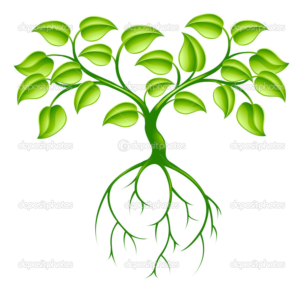 Green tree and roots