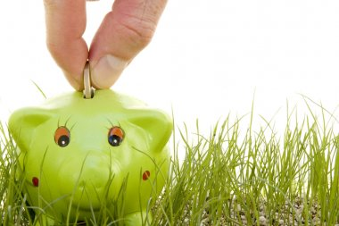 Saving money on a piggy-bank on the grass