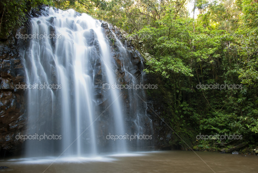 Cascades of water flowing over rock in jungle