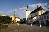 Kostel Navštívení Panny Marie v svitavy, cz