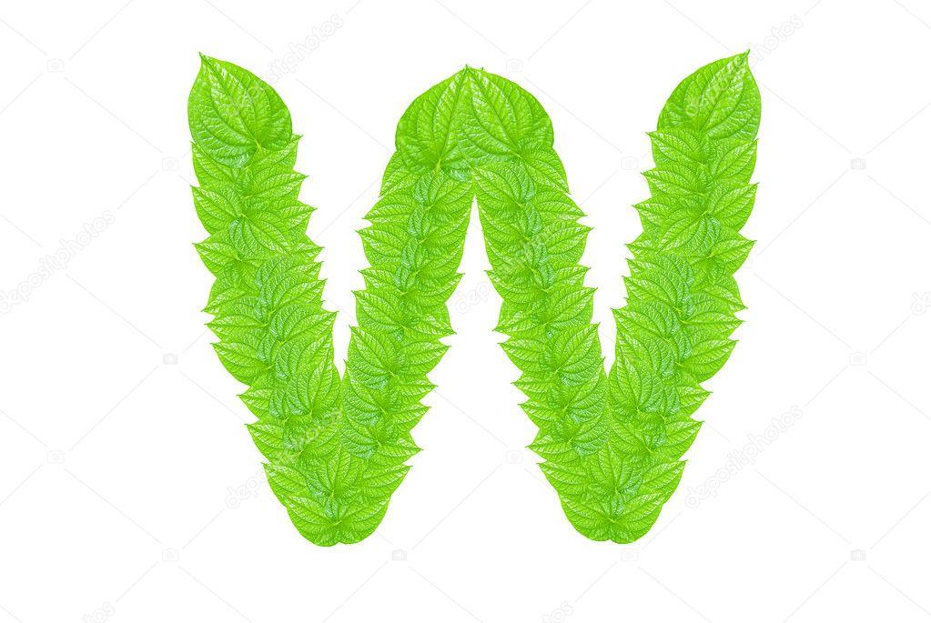 alfabeto inglés de verdes hojas — Fotos de Stock © sasilsolution ...