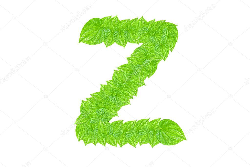 alfabeto inglés de verdes hojas — Foto de stock © sasilsolution #8199019