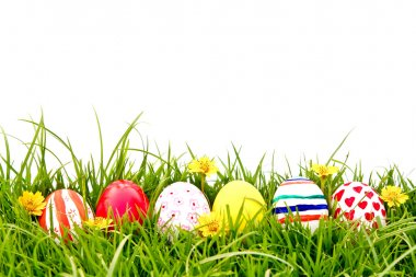 Easter Eggs with flower on Fresh Green Grass