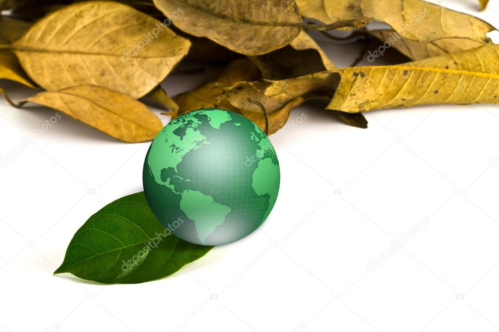 Green earth with dry leaves