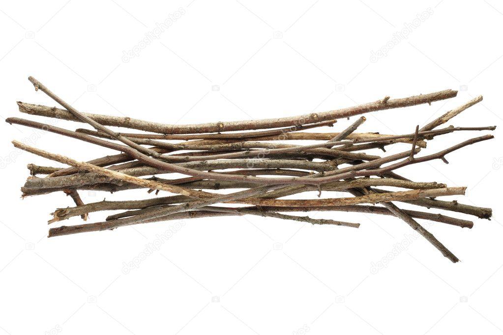 Sticks and twigs, wood bundle
