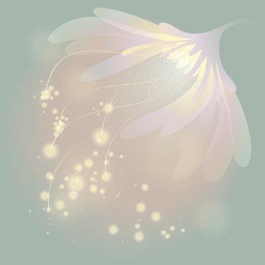 Soft fairy flower at spring sunrise